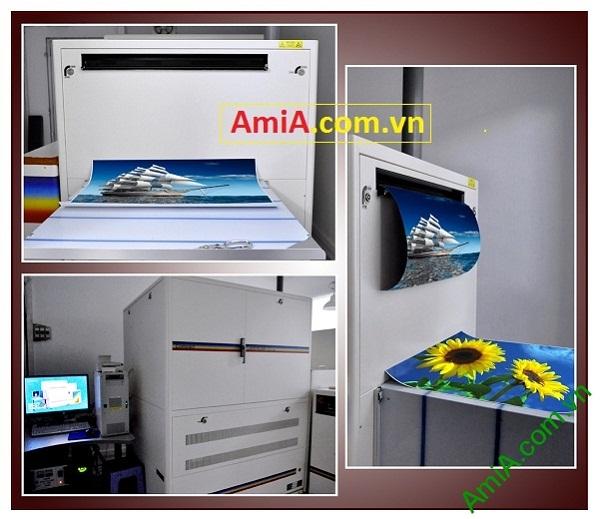 Máy in ảnh Labs cho chất lượng hình ảnh vượt trội chỉ có tại Amia Hà Nội