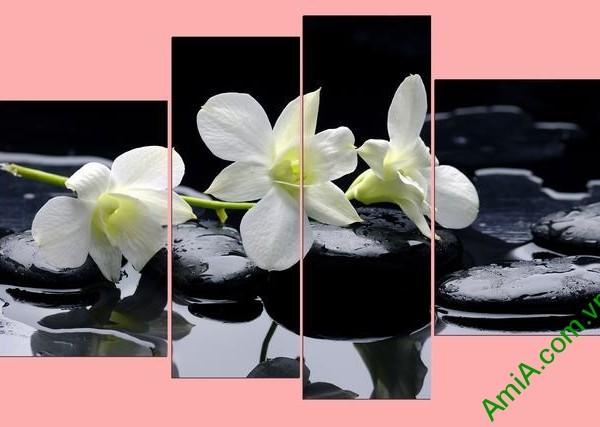 Tranh treo tường phòng khách phong lan trắng Amia 366