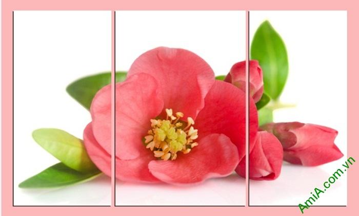 Tranh treo tường phòng ngủ hiện đại hoa trà Amia 388