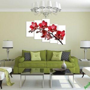 Tranh hoa Lan đỏ treo tường phòng khách đẹp Amia 369-01