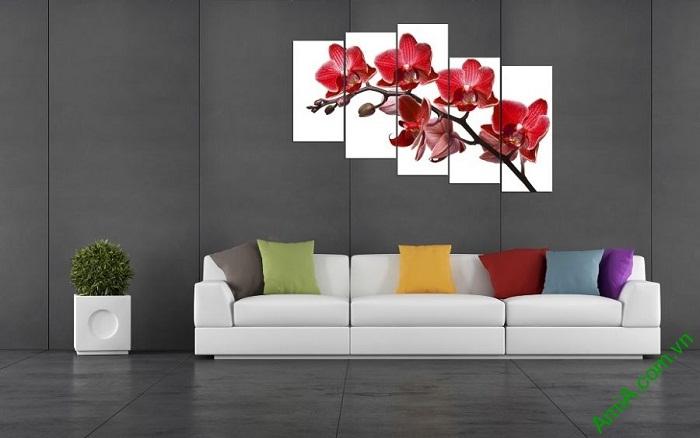 Tranh hoa Lan đỏ treo tường phòng khách đẹp Amia 369-04