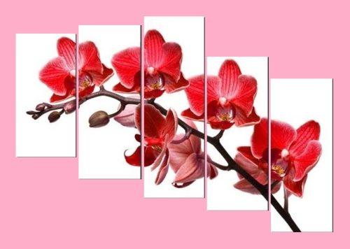 Tranh hoa Lan đỏ treo tường phòng khách đẹp Amia 369