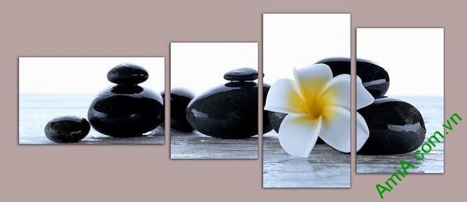 Hinh anh dep hoa su da tro thanh y tuong tranh spa treo tuong amia 554
