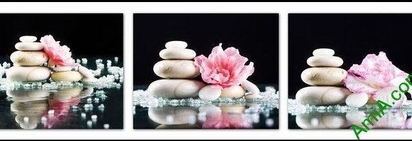 Hình ảnh Tranh hoa đá treo tường trang trí spa