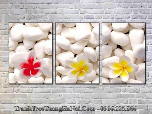 Bộ tranh hoa đại trang trí spa 3 tấm