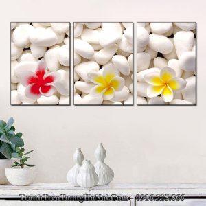 Tranh đẹp treo spa hoa sứ trắng