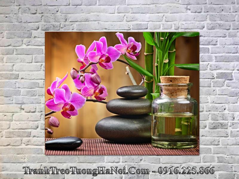 Tranh spa hoa lan đá amia 552