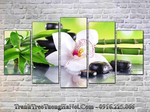 Tranh ghép 5 tấm spa hoa lan