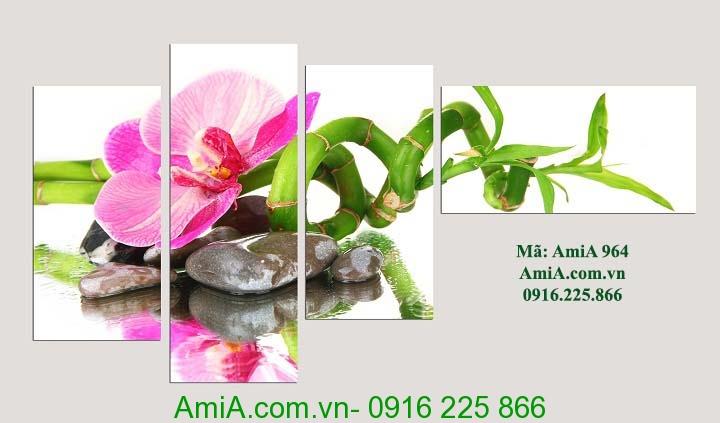 Hinh anh tranh dep hoa phong lan da treo spa amia 964