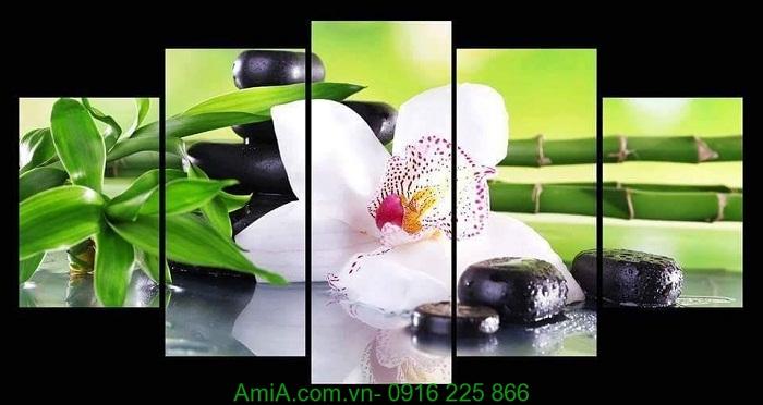 Hinh anh tranh hoa lan treo spa dep amia 951