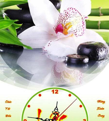 Hinh anh tranh hoa phong lan treo tuong lich tet