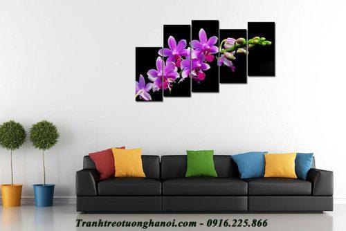 Hinh anh tranh treo tuong hoa phong lan