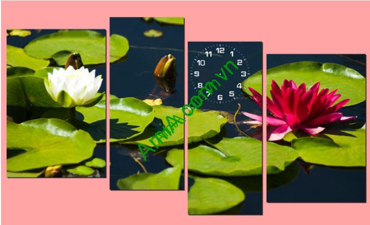 Tranh treo tuong dong ho hoa sung dep Amia 218