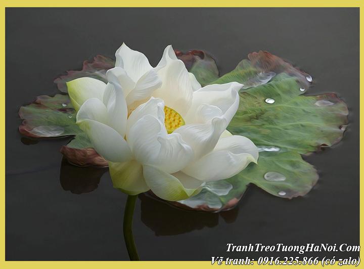 Chép tranh vẽ hoa Sen của Dương Quốc Định