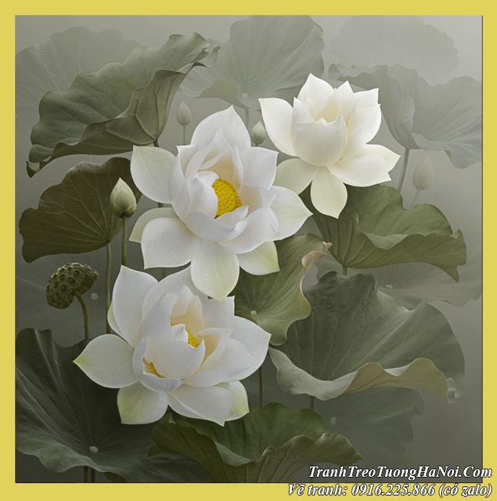 Vẽ tranh hoa Sen Dương Quốc Định kiểu tranh đen trắng