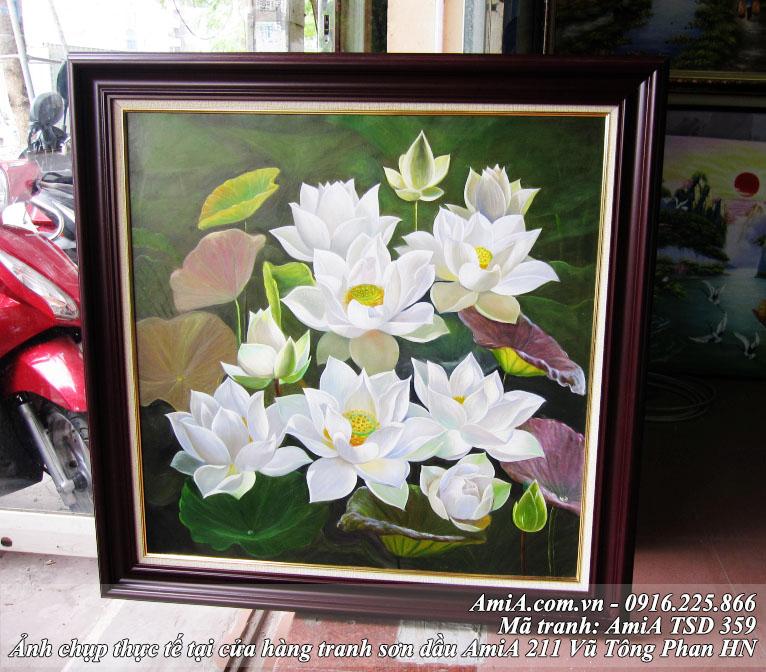 Tranh hoa Sen ve son dau AmiA ma 359