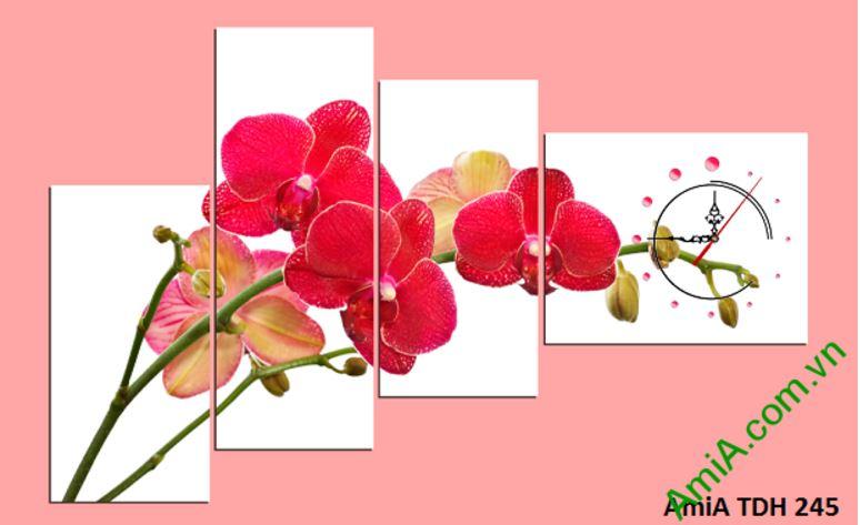 Tranh treo tuong hoa phong lan do va dong ho amia 245