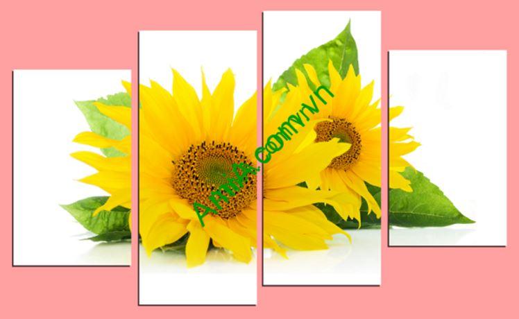 tranh dong ho hoa huong duong vang dep amia 242