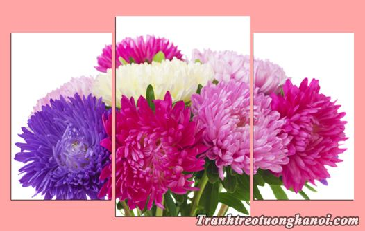 Tranh hoa cuc treo tuong ghep bo 3 tam AmiA