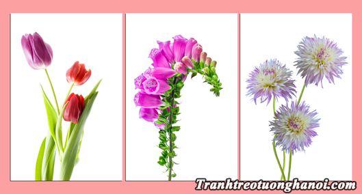 Tranh hoa treo tuong phong khach phong ngu bo 3 tam