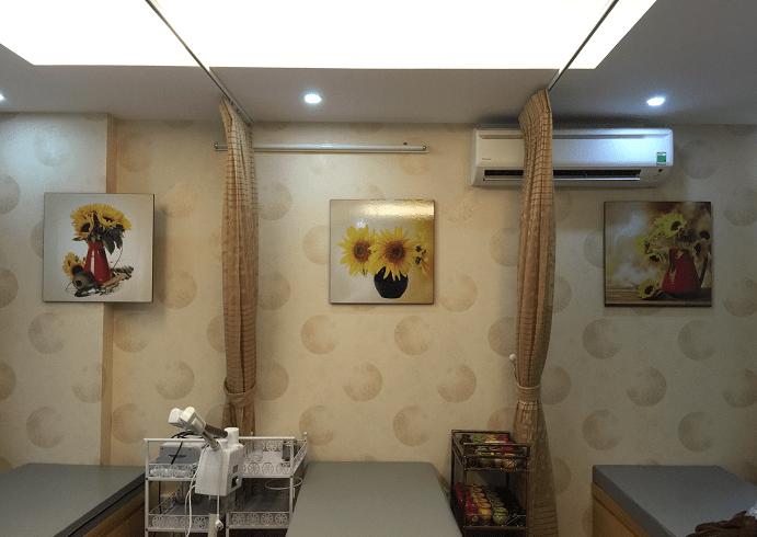 Tranh treo tuong spa chat luong cao chi co tai AmiA