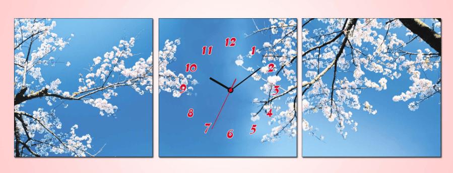 Tranh hoa man trang nen troi xanh AmiA 1031