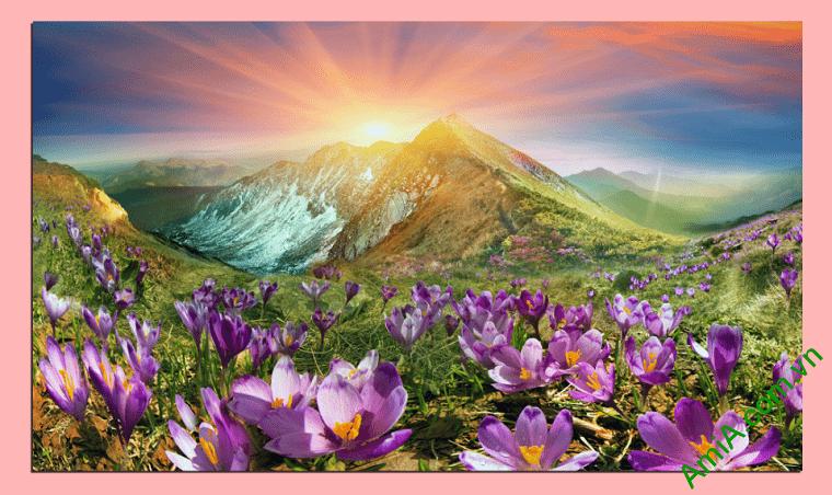 Tranh phong canh doi hoa nang kho lon AmiA 343