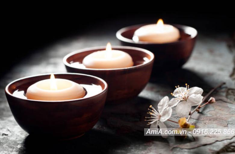 Hinh anh hoa phong lan treo tuong spa dep thu thai AmiA ist-844713734