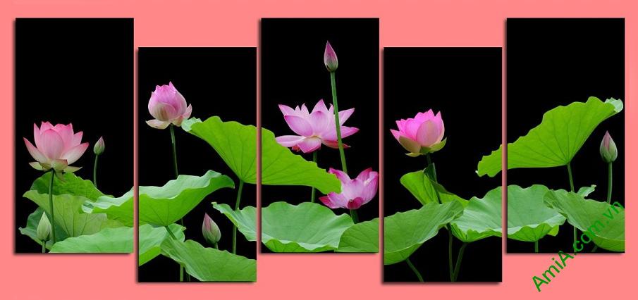 Tranh phong thuy hoa Sen kho lon AmiA 2500