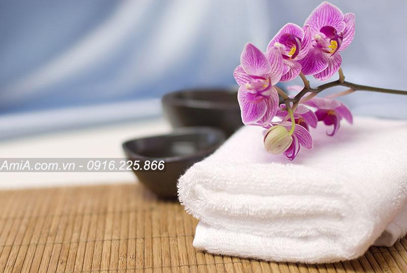 Tranh spa hoa phong lan sang trong dang cap thu thai AmiA ist-173033242
