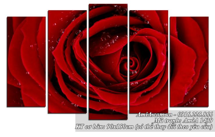 Tranh hoa hong do treo tuong phong khach phong ngu AmiA 1439