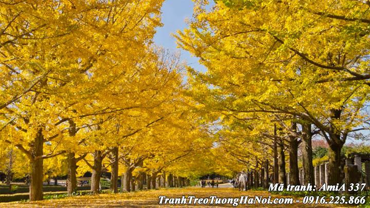 Tranh rừng cây mùa thu lá vàng AmiA 337 treo tường hiện đại