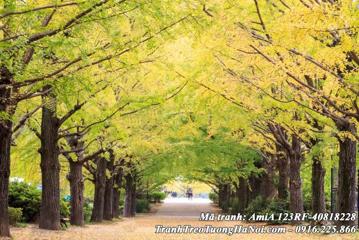 AmiA làm tranh treo tường theo yêu cầu phong cảnh rừng cây