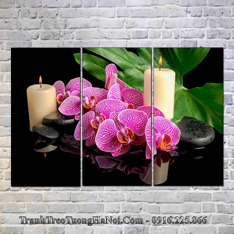 Tranh hoa lan nến đá treo spa hiện đại