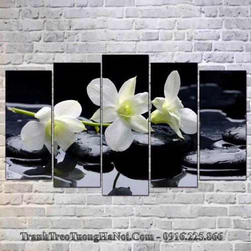 Tranh hoa lan da ghep 5 tam amia 366