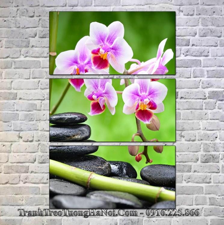 Tranh spa hoa lan da treo op tuong phong khach spa