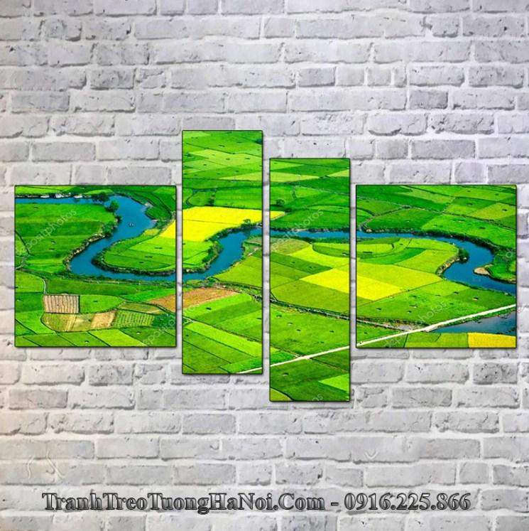 Tranh treo tường phòng khách đồng quê xanh lúa