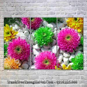 Tranh hoa cuc da treo tuong spa