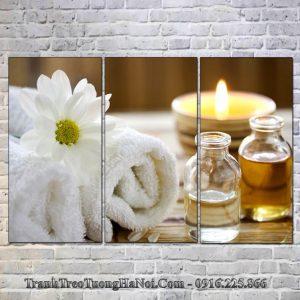 Tranh spa hoa cuc diu dang