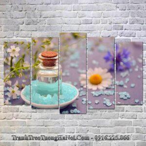 Tranh treo spa hoa da tinh dau