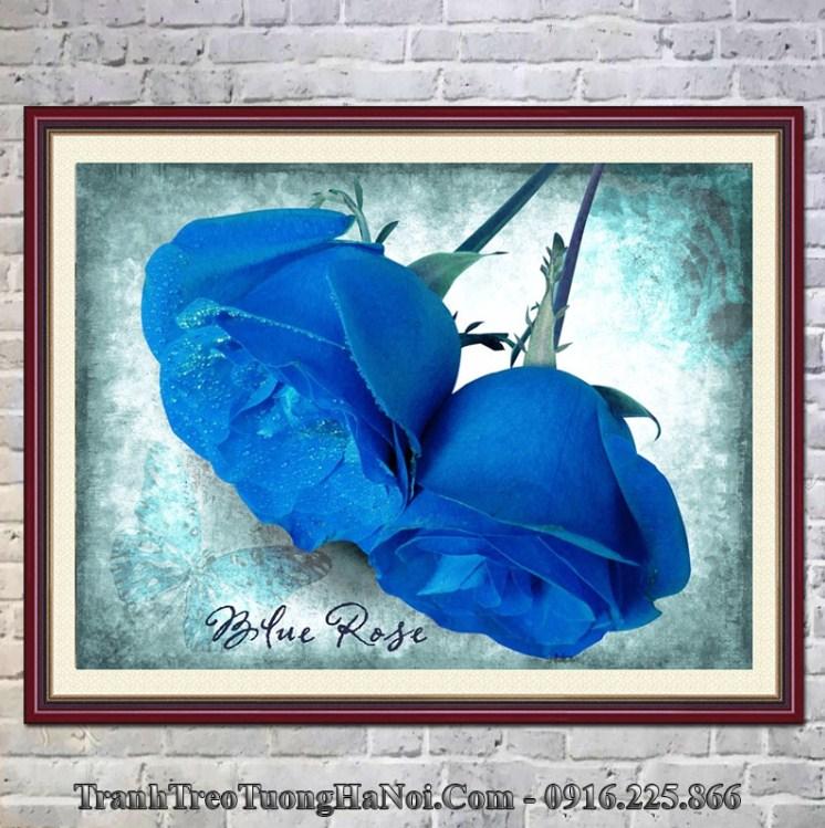 Tranh hoa hồng xanh treo tường hợp mệnh Thoa Xuyến Kim