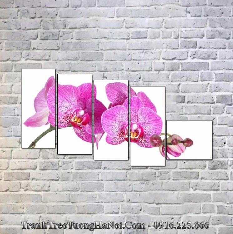 Tranh hoa màu tím thuộc hỏa hợp sa trung thổ