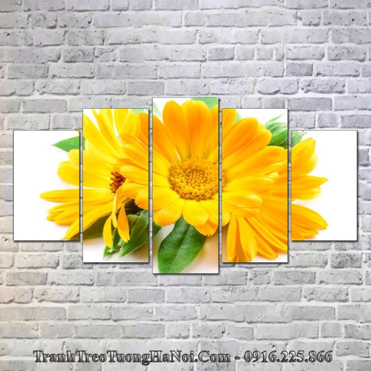 Tranh hoa cúc vàng thuộc Kim hợp mệnh Bạch Lạp Kim