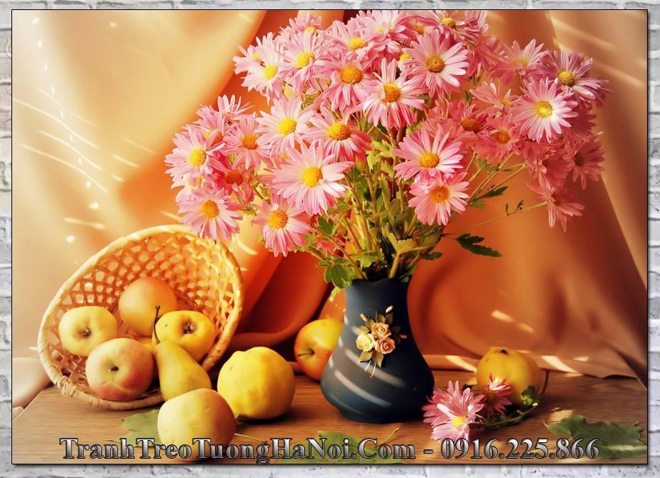 Qua tan gia gia re duoi 500k binh hoa cuc hoa mi amia 2038
