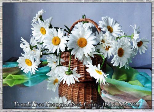 Qua tan gia gio hoa cuc hoa mi gia re amia 2044