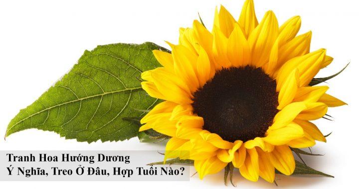 Tranh hoa huong duong y nghia treo o dau hop tuoi nao