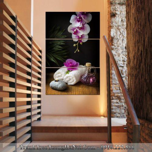 Tranh treo tuong kieu dung spa hoa phong lan SP92-pix3793413