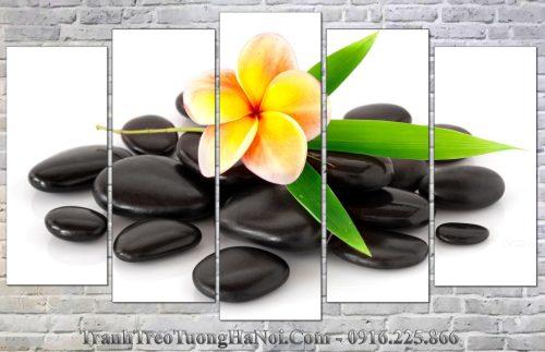 Tranh ghep spa hoa su da 5 tam amia sp185