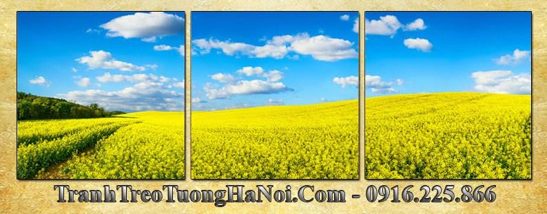 Tranh dong hoa cai vang 3 tam vuong AmiA 3056