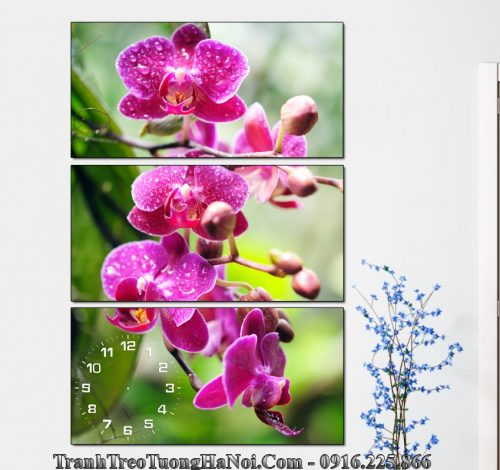 Tranh dung hoa lan no phu quy mau tim